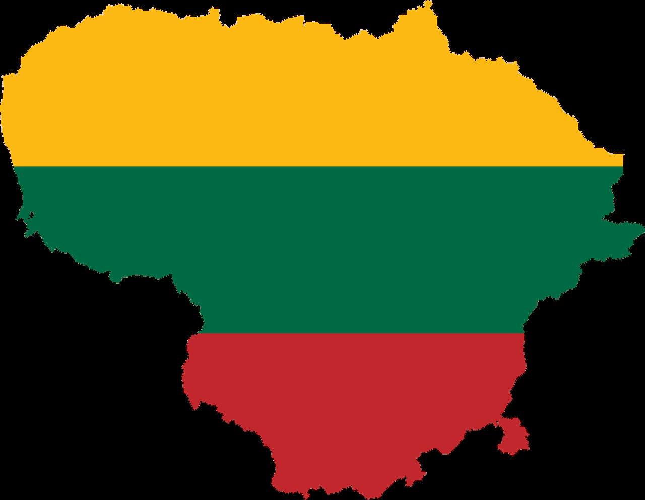 EMPIT, TIROCINI in Lituania in ambito IT