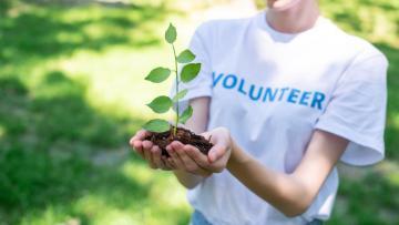 Volontariato in campo editoriale nel settore green