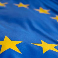 22 giugno 2021: Conferenza sul futuro dell'Europa