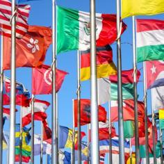 """Webinar """"PMI e traduzione: opportunità e migliori"""