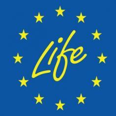 Programma LIFE: 121 milioni di € in progetti per